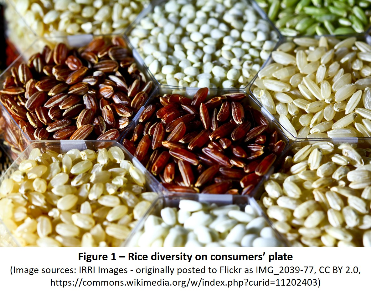 Rice diversity on consumers' plate