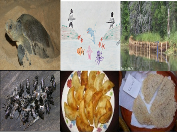Glimpses Of Nature And Culture
