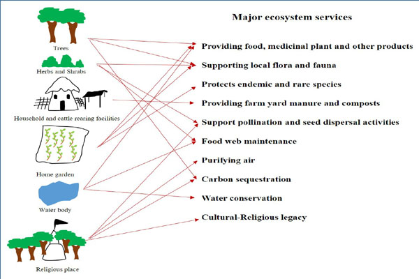Rural settlement: The epicenter of sustainability in environmentally challenged India
