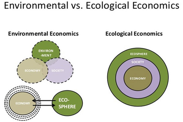 Biodiversity conservation to sustainable consumption: Discerning the root causes of the environmental crisis